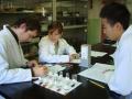 2010 laboratori-2 1r cicle eso
