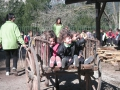 2009 granja  infantil i primaria